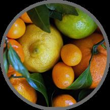 le belle, suplemen vitamin c, vitamin c ipi, vitamin c tablet, permen vitamin c, manfaat vitamin c, vitamin c 50 mg, vitamin c untuk kulit, fungsi vitamin c dan contohnya,