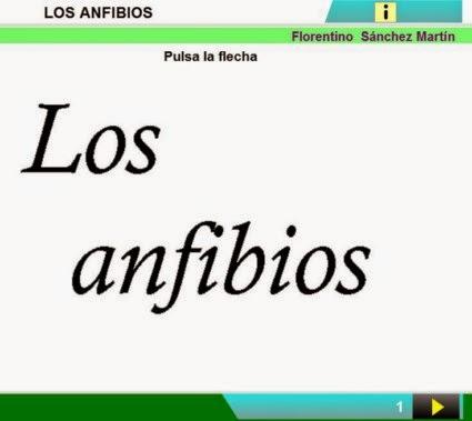 http://cplosangeles.juntaextremadura.net/web/edilim/curso_2/cmedio/animales02/anfibios02/anfibios02.html
