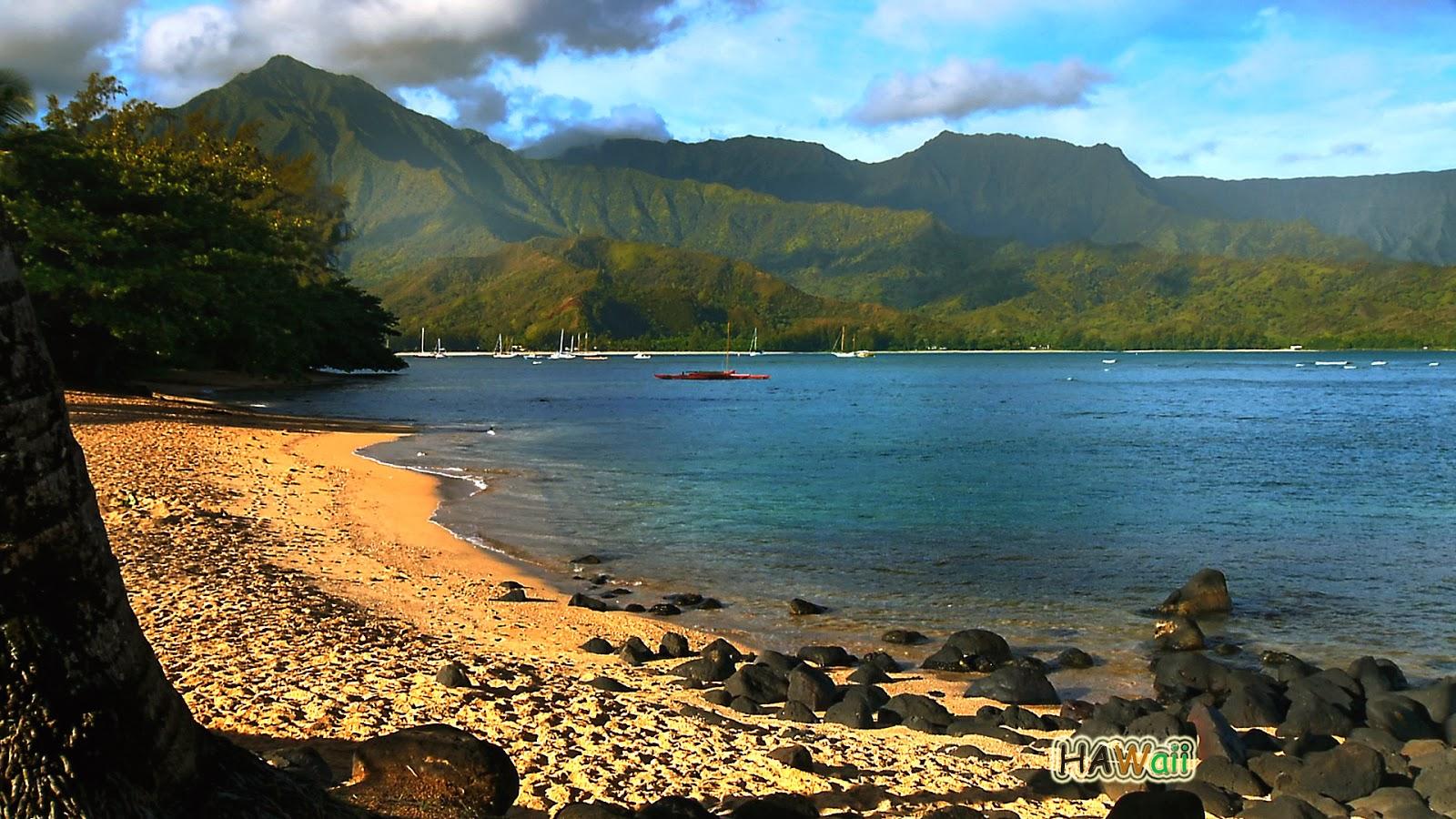 hawaii hawaiian island desktop nature beach middle sea ocean beauty beaches natural views islands gadgets place