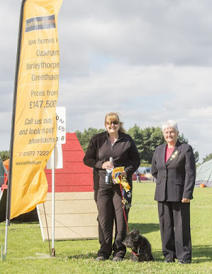 Larkfleet ring dog agility show