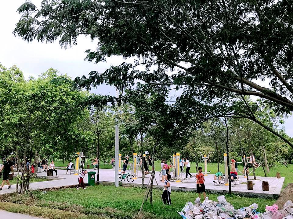 Ngắm hồ sen trong công viên văn hóa Gò Vấp