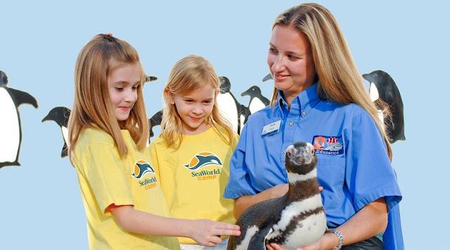 Passeios com crianças no Parque SeaWorld em San Diego