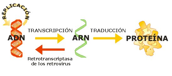 how to get arn code