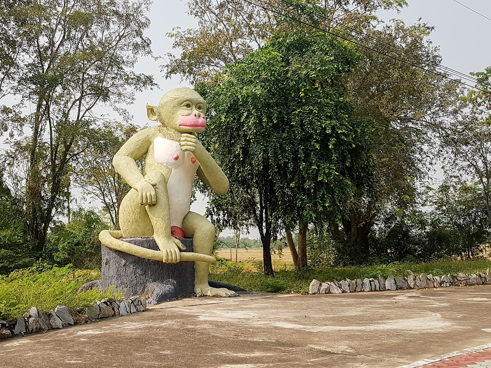 statua,makaki,Tajlandia