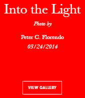 Vogue Italia Into the Light by Avianquest a.k.a. Peter C. Florendo