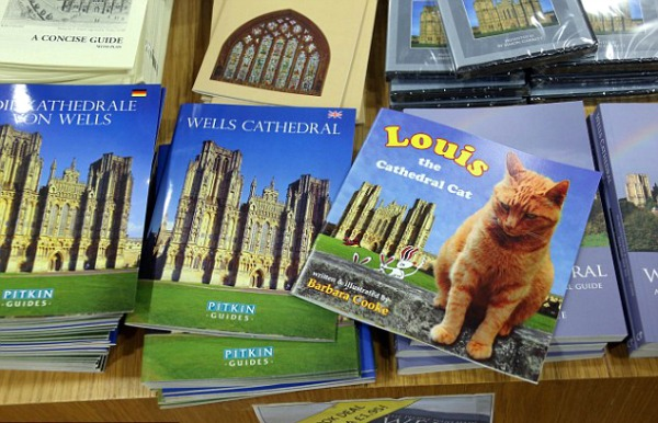 book louis the cathedral cat