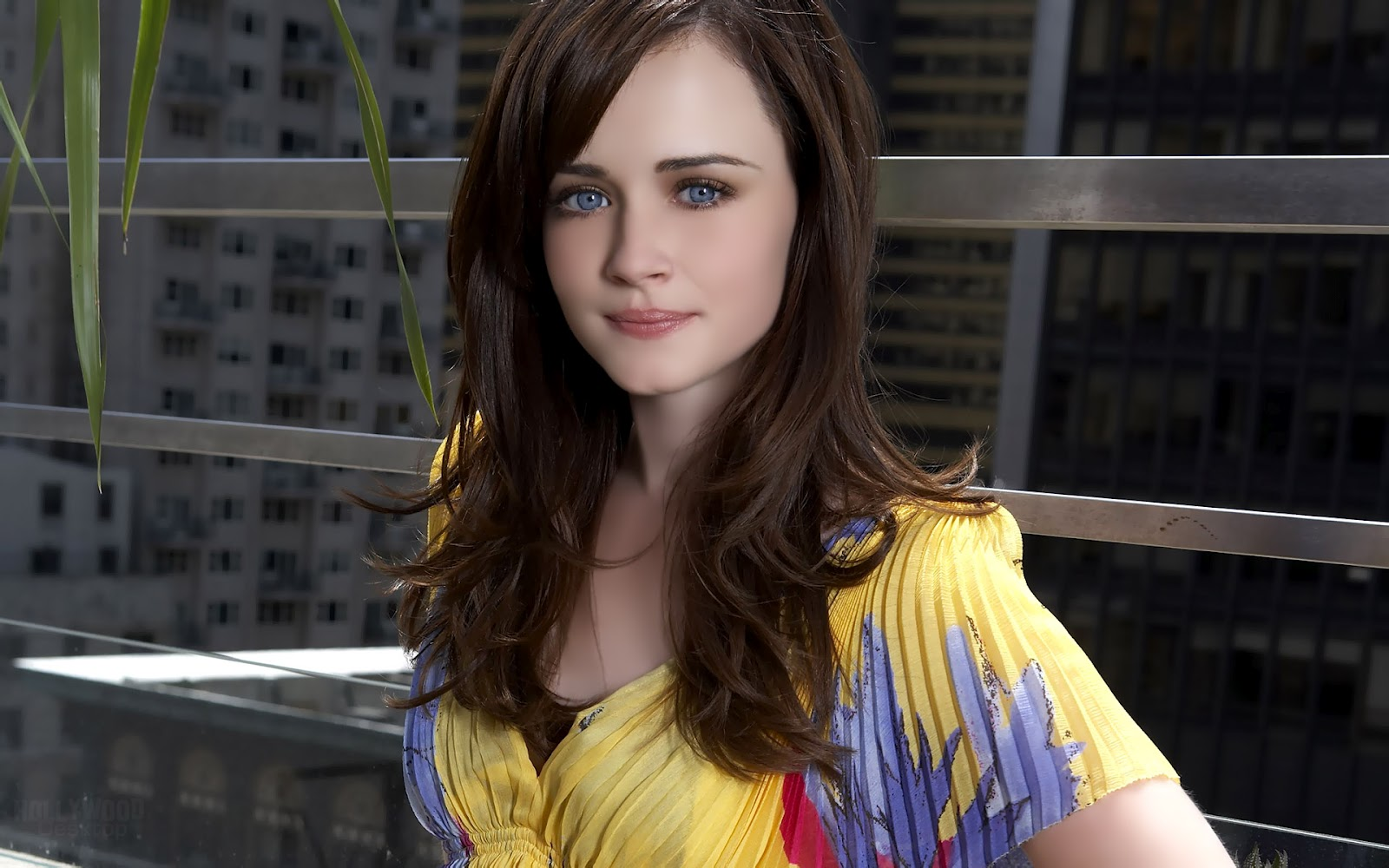 Alexis Bledel Hd Wallpapers  Celebrity Insights-3756