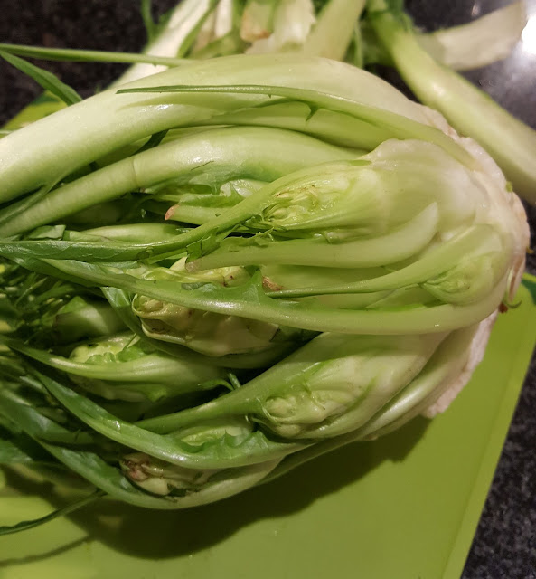 Once the outer leaves of the puntarelle head are removed, you can see the tightly packed  shoots at the core.
