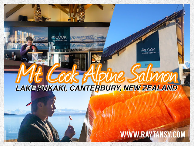 Ray Tan 陳學沿 (raytansy) ; Mt Cook Alpine Salmon @ Lake Pukaki, Canterbury, New Zealand 新西兰 坎特伯雷 普卡基湖 库克山三文鱼养殖场 生鱼片