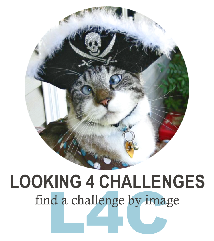 LOOKING 4 CHALLENGES with Pirate Cat