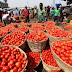 Governor El-Rufai declares state of emergency on tomatoes