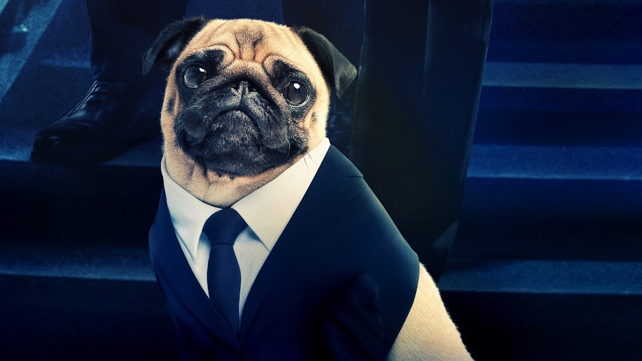 Men In Black International Frank The Pug 8k Wallpaper 19