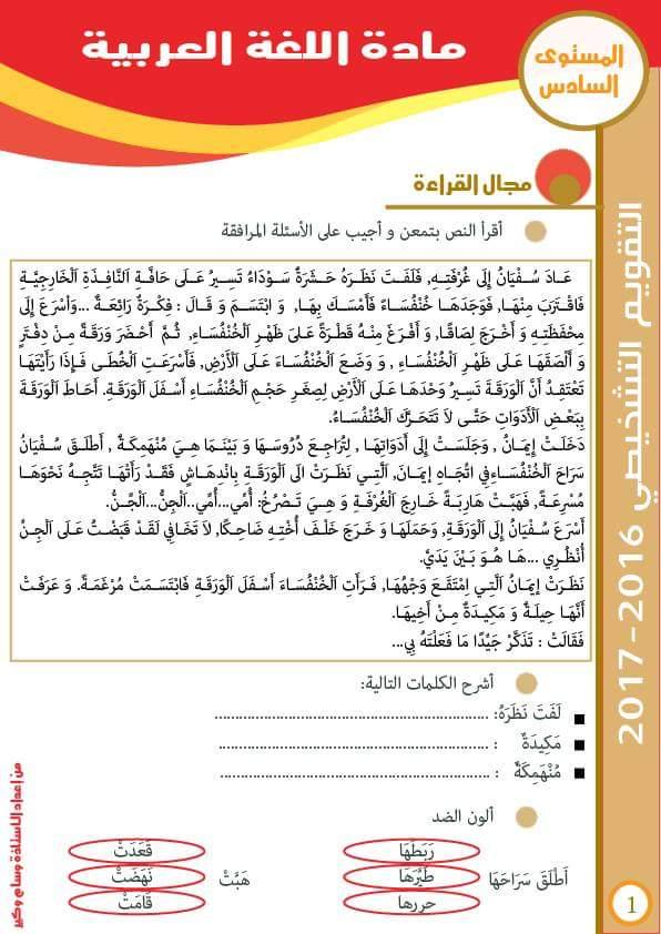 رائزي مادة اللغة العربية والنشاط العلمي للمستوى السادس