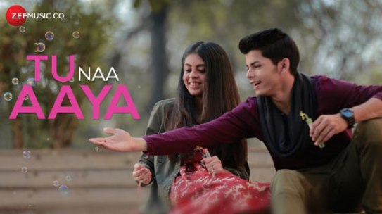 Tu Na Aaya Lyrics