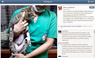Medico Veterinario acusa a Laura Acuña