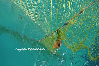 Kefalonia fishing