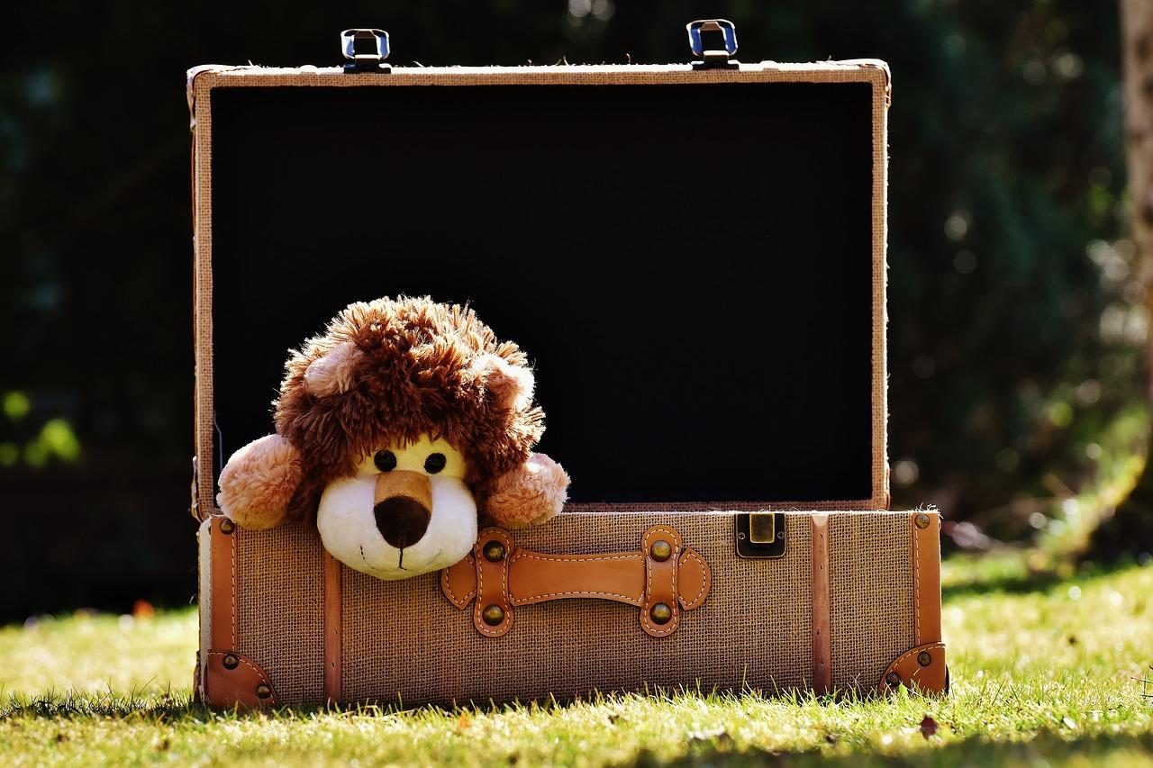 Cómo elegir maletas para niños - agendademama