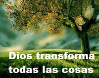 El amor de Dios es el poder más grande.