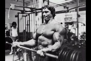 Arnold Schwarzenegger Bodybuilding Ebook