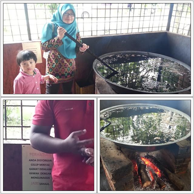 Tempat Menarik di Langkawi| Gamat Langkawi | Warisan Sireh Lagenda