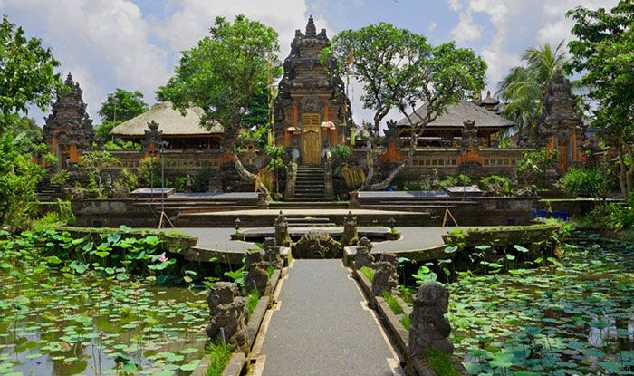 Ubud Tour - Bali Tours in Half Day