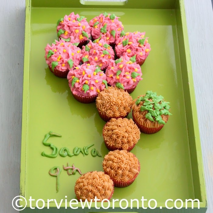 Torviewtoronto Flower Birthday Cupcakes With Buttercream Icing
