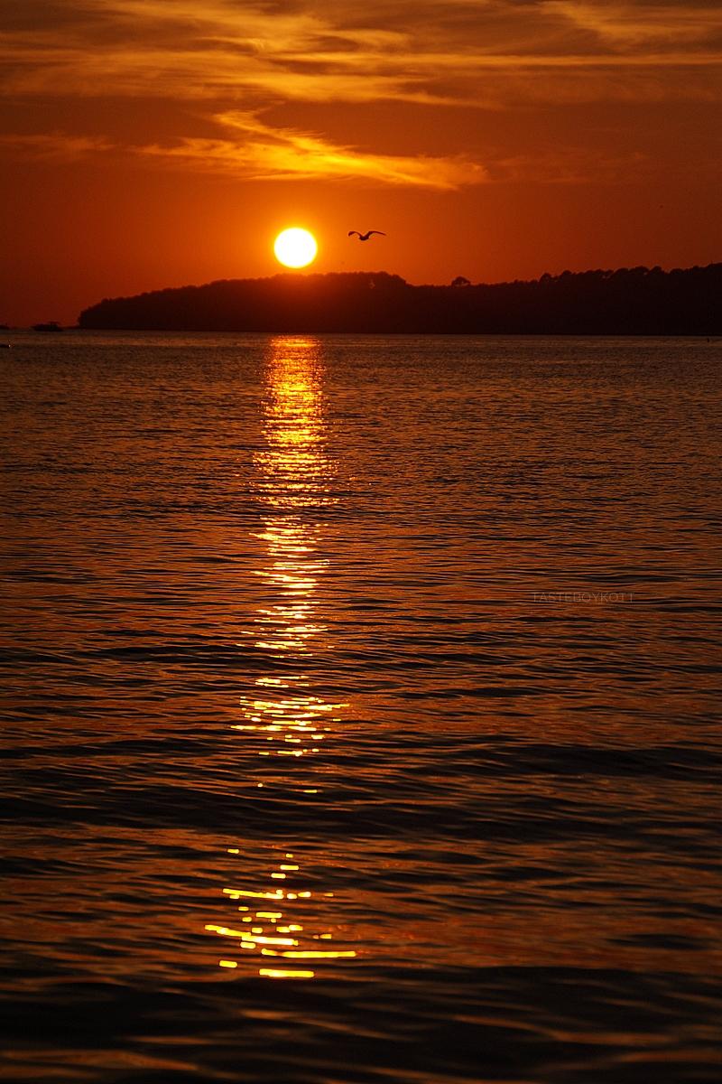 Croatia evening night sky summer heaven sunset at the sea