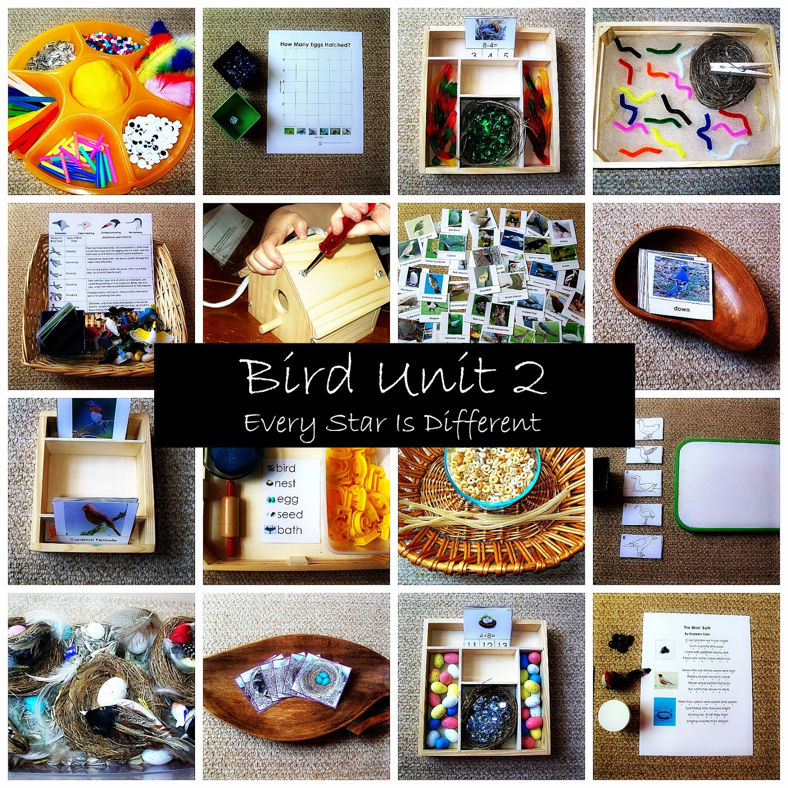 Montessori Inspired Bird Ts And Resources For Children