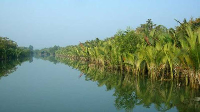 IMAGE-OF-SUNDARBAN