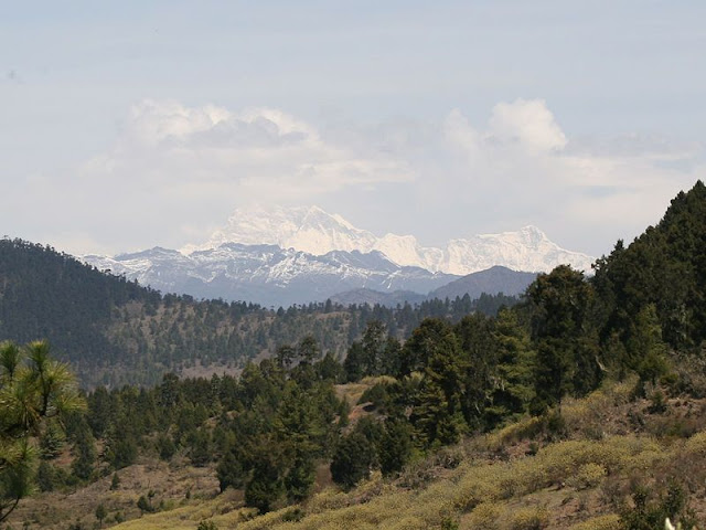 Montagne del Bhutan