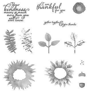 The Painted Harvest Photopolymer Stamp Set by Stampin' Up!