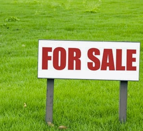 Tips Mudah Membeli Tanah