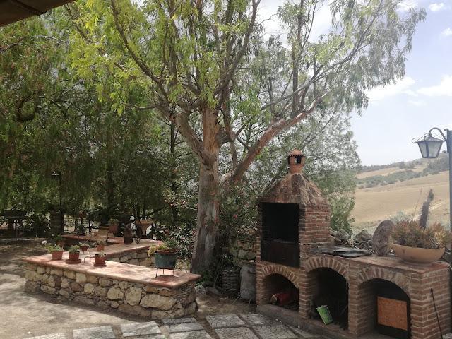 grill z cegły, murek kamienny