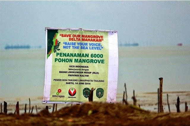 Spanduk penanaman 6,000 pohon mangrove