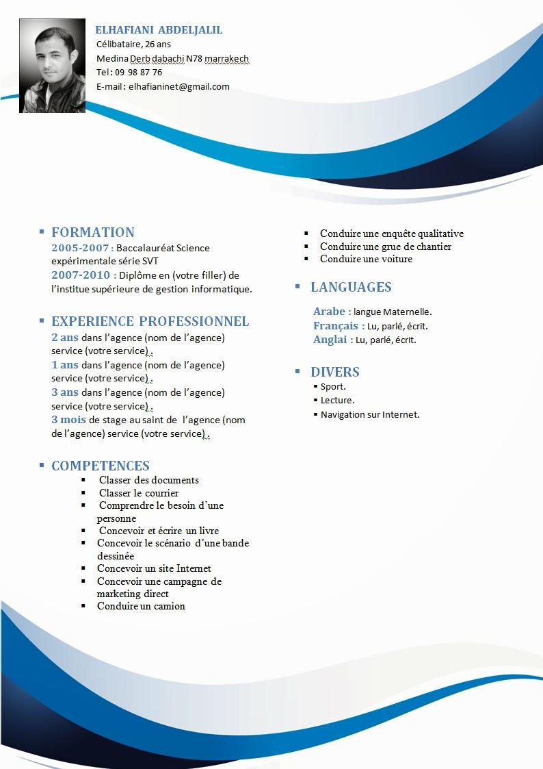 Model Cv Format Word Gratuit Free Online Resume Format