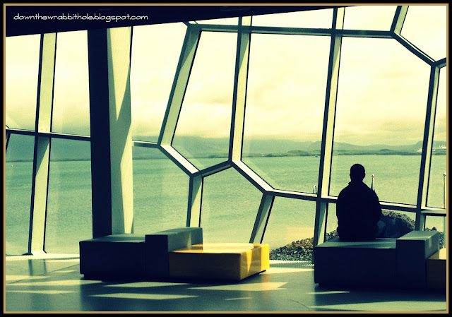 Reykjavik Harpa Concert Hall, things to do in Iceland