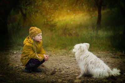 Por que ter cachorro aumenta a expectativa de vida das pessoas? Amor gerando saúde e bem-estar
