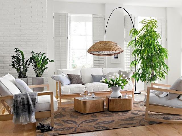 Bố trí cây xanh cho phòng khách