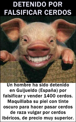 falsificador-cerdos