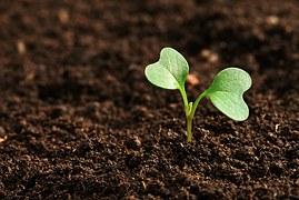 Pahami Pengertian Pertanian Organik Menurut Para Ahli Agribisnis