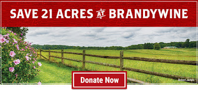 Following Up: Will You Help Us Save 21 Acres at Brandywine?