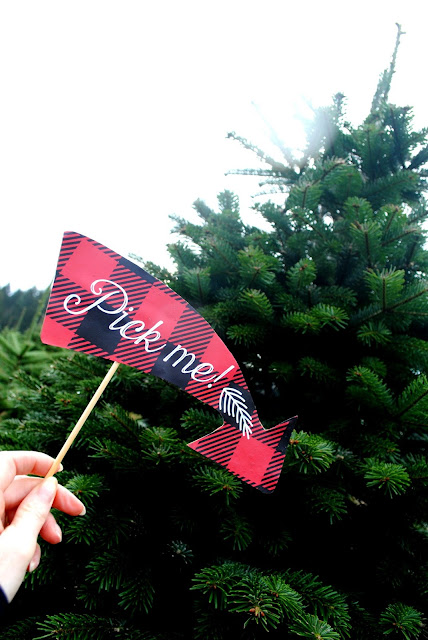 Photo props to make your tree hunt more fun. More inspiration at FizzyParty.com