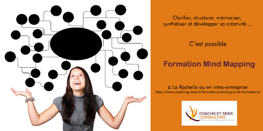 Formation / Atelier Mind Mapping ou Carte Heuristique