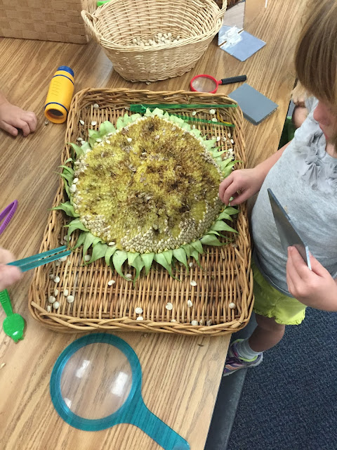 back to school start beginning  of school year kindergarten free choice play centers