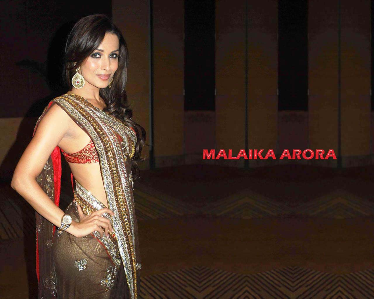 Hot Malaika Arora Bikini Wall Papers  Naked Xxx Pictures Collection-6176