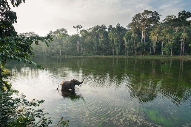 Scientists say world's protected areas need a re-boot