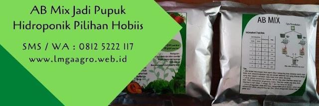 ab mix,hidroponik,budidaya tanaman,tanaman hidroponik,pertanian,benih tanaman,pupuk,pupuk pertanian,lmga agro