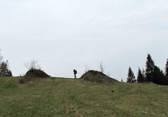 Kubiesów Groń (785 m n.p.m.)
