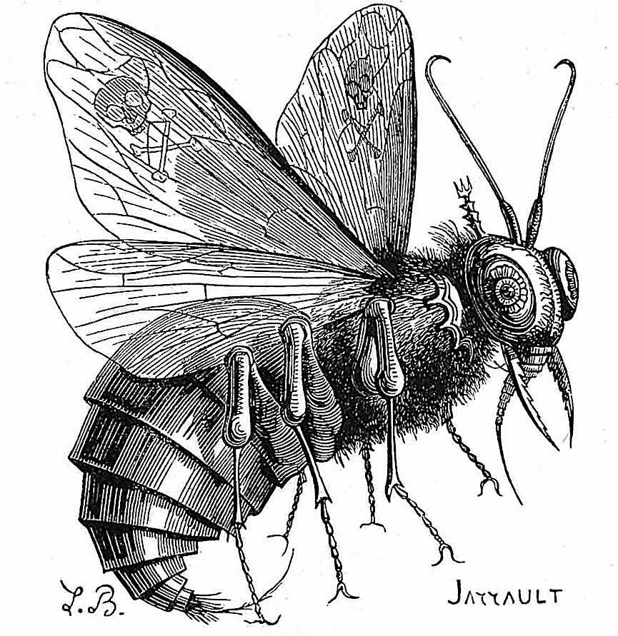 a drawing of a housefly, an 1863 demon of pestilence in France