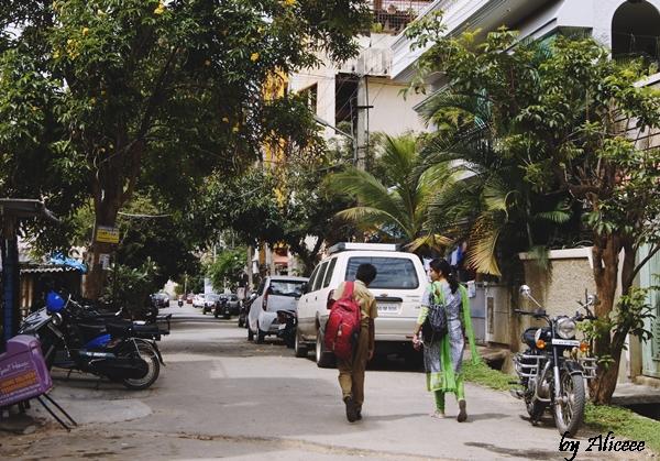 strazi-in-India